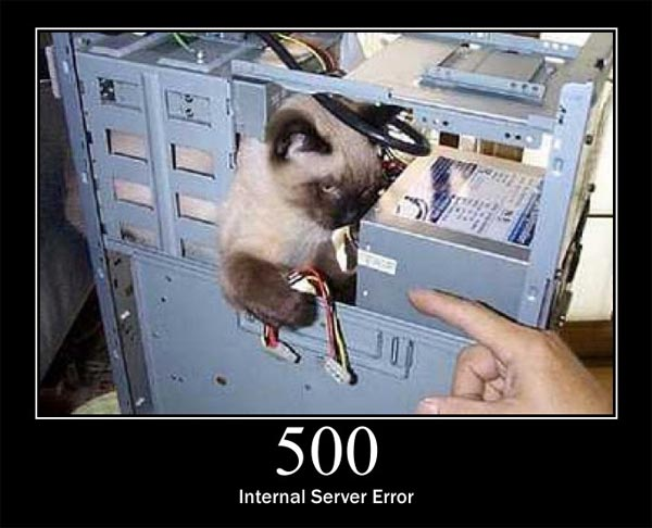 error500-worpress