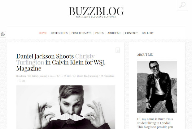 tema wp per news e blog a pagamento - buzz blog